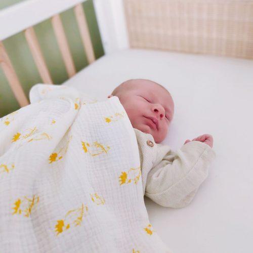lange-pour-bebe-coton-bio-aras-ecru-petit